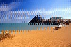 20120615-235947.jpg